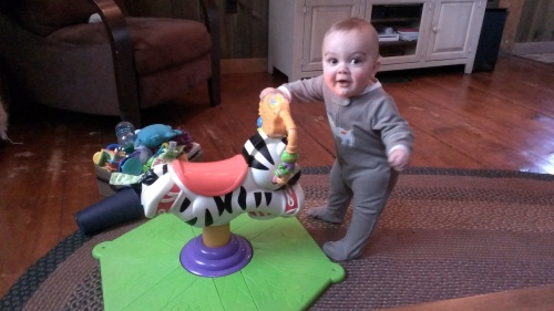 His new zebra. Good for pulling up practice!
