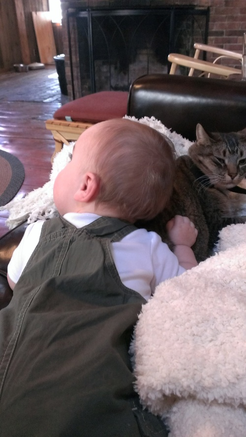 Yes, he lays on the cat. And she lets him. And it's adorable.