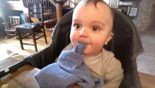 Eating hand towels for dinner. Silly boy.