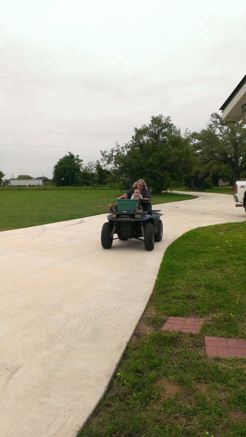 Aunt Marla took grey on the ATV!